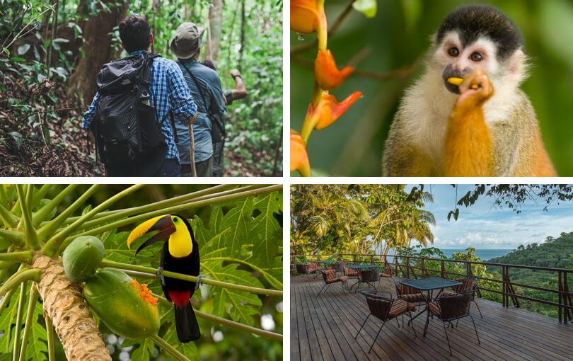 where to visit in Costa Rica - Corcovado