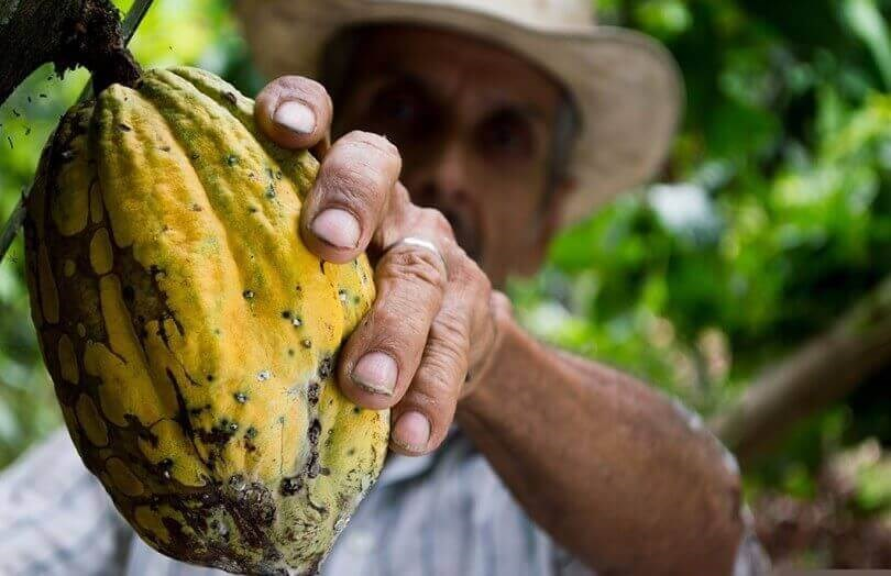 where to visit in Colombia - cocoa farmer