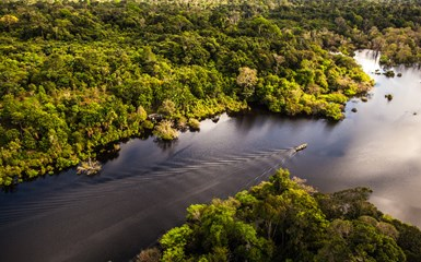 Brazilian Amazon Lodges - Brazil Holidays