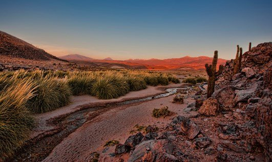 The Sereno Tour - Atacama Desert - Holidays to Chile