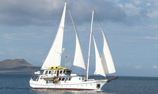The Cachalote I Tour - Holidays to Galapagos Islands