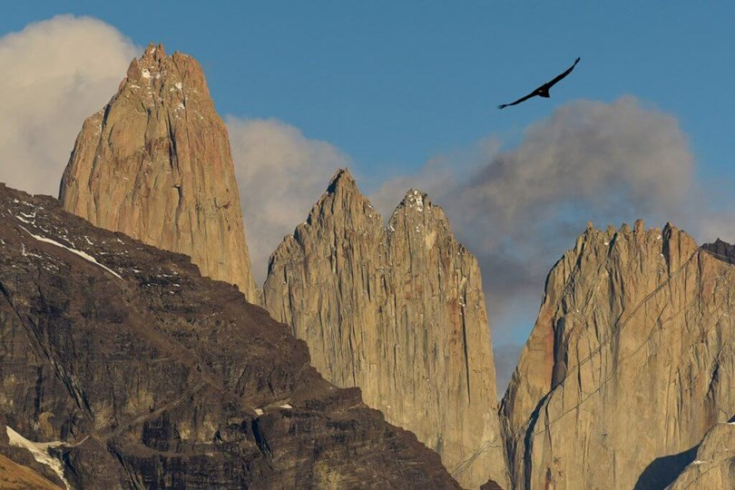 where to see condors - Torres del Paine