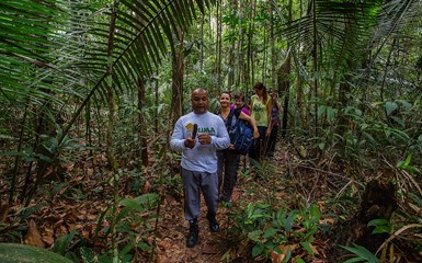 Jungle Nature Trails - Brazilian Amazon Lodges Accommodation
