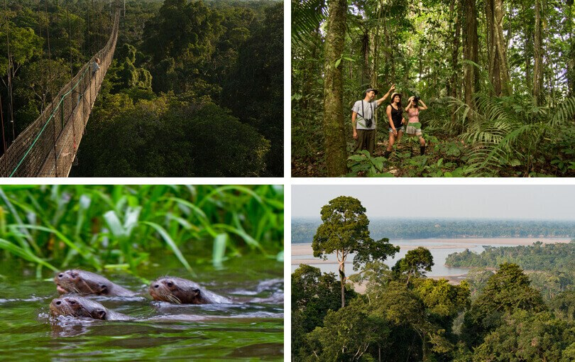 Best places to visit the Amazon - Ecuador