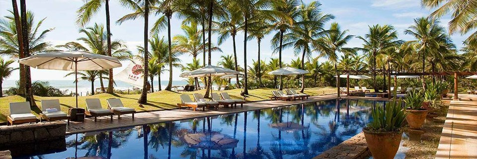 Palm trees and luxury pool by the beach