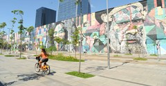 Murial Bicycle
