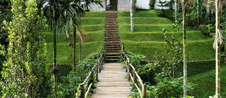 Discover spice gardens, exotic plants and wildlife