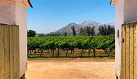 Santa Rita Vineyard And Hotel